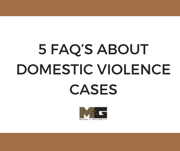 domestic violence case tips