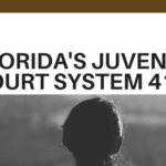 411 of Juvenile Crimes in FLorida