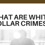What are White collar Crimes